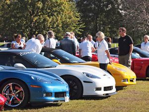ccs_ronneby_brunn_2017_cars1