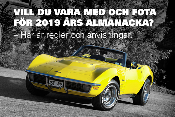 ccs_almanacka_2019_600x400